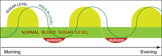 how blood sugar and insulin affect your energy and hunger during the day